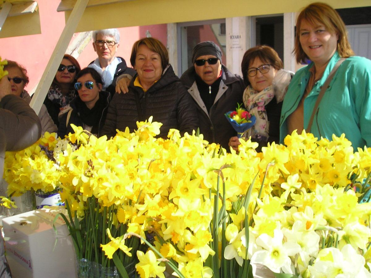 Azione di beneficenza per la Giornata dei Narcisi - glavna fotografija
