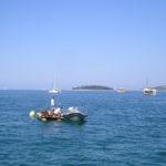 Azione ecologica per una costa più pulita 4
