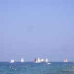 Regata di imbarcazioni con vela al terzo e latina 4