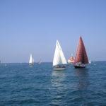 Regata di imbarcazioni con vela al terzo e latina 5