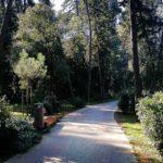 Projekt izgradnje parkovne šetnice – pješačke staze Muntravo 6