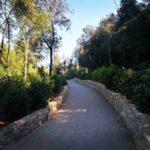 Projekt izgradnje parkovne šetnice – pješačke staze Muntravo 4