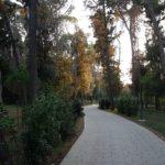 Projekt izgradnje parkovne šetnice – pješačke staze Muntravo 1