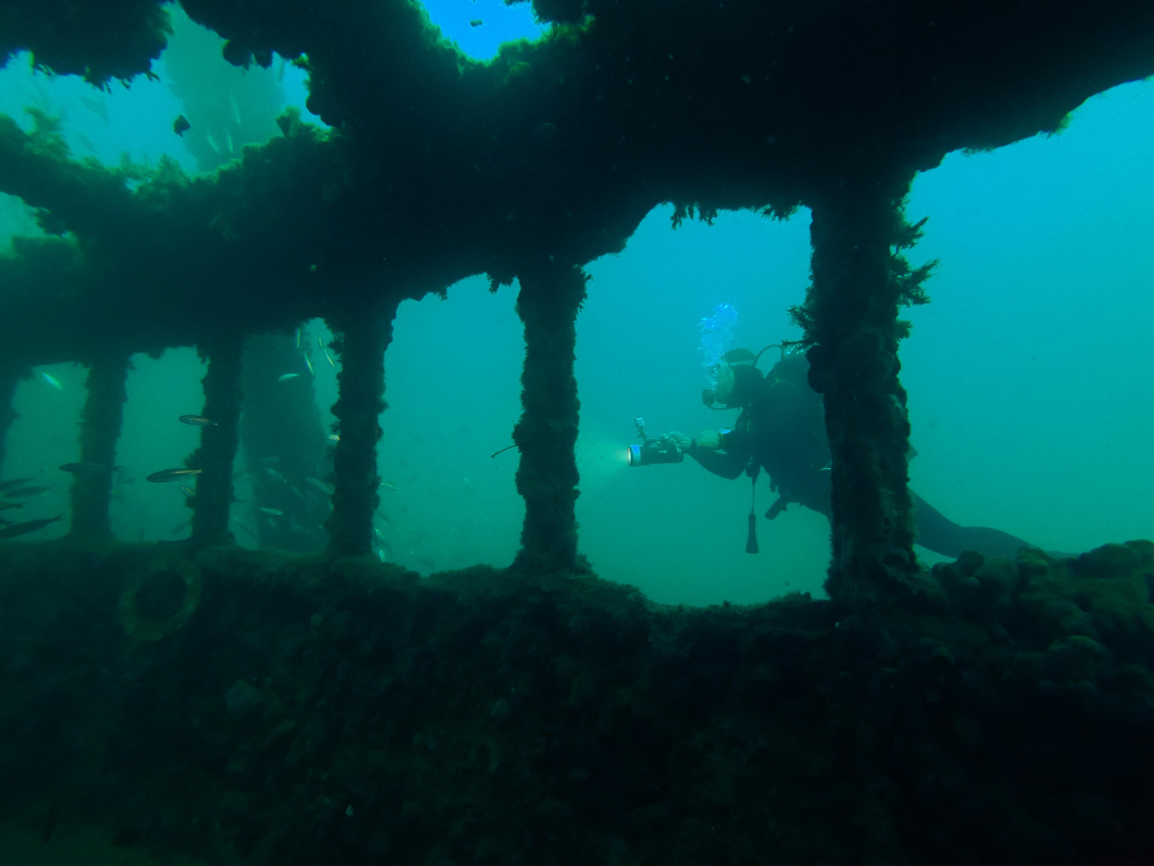 Immersione in memoria dell'affondamento della Baron Gautsch