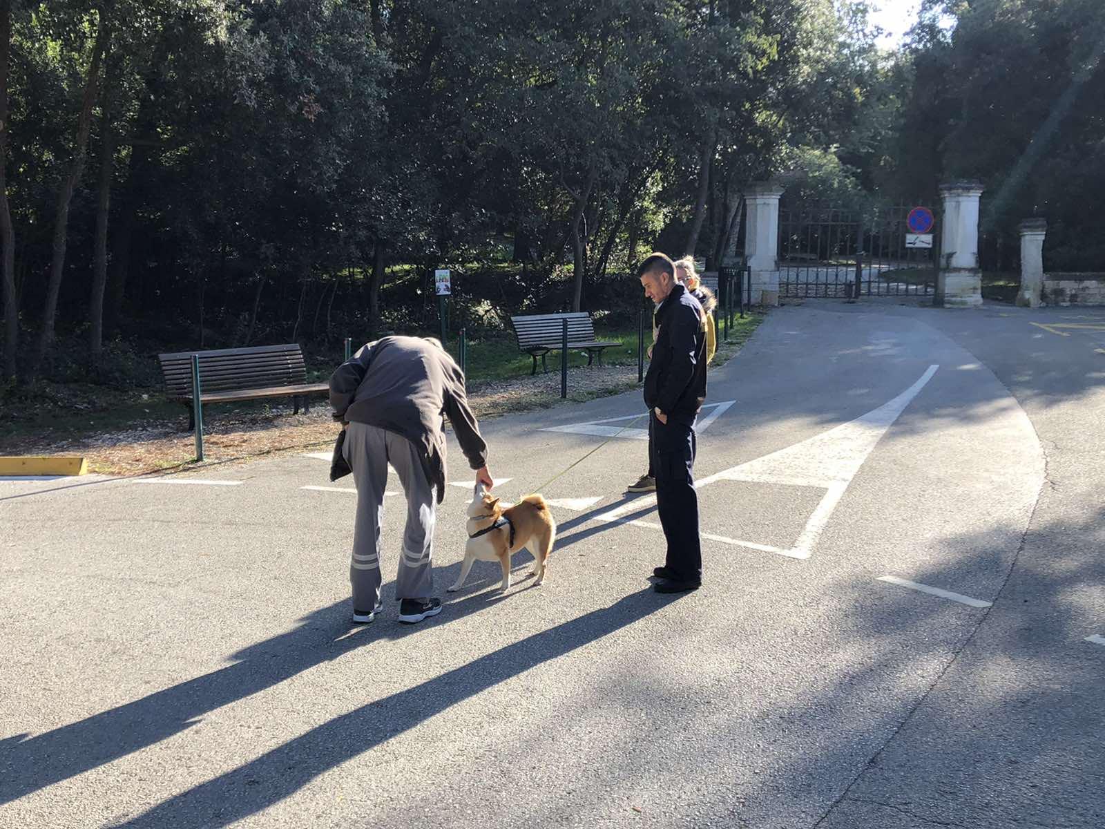 Le guardie comunali effettuano il controllo dei cani nei luoghi pubblici