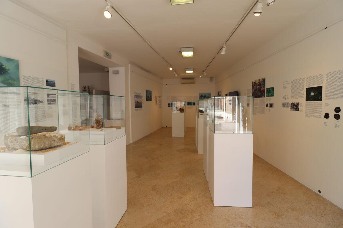 "È stata inaugurata la mostra ""Veliki Piruzi – Pirusi Grande"" - glavna fotografija"