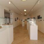 """È stata inaugurata la mostra """"Veliki Piruzi – Pirusi Grande"""" 7"""