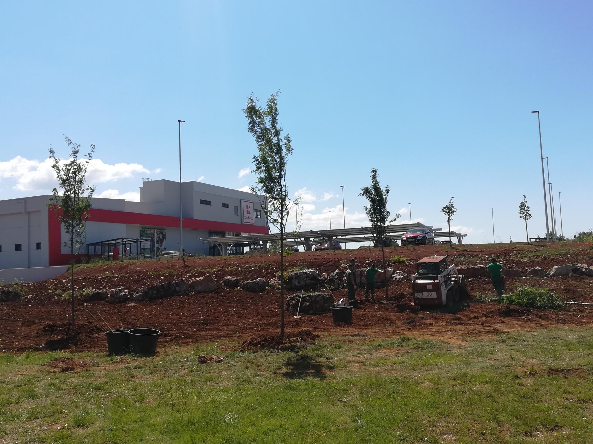 Iniziata la sistemazione delle aree verdi della zona Gripole-Spine'